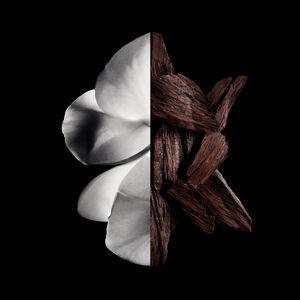 View 3 - GENTLEMAN GIVENCHY - Eau de Parfum Boisée GIVENCHY - 100 ML - P011055