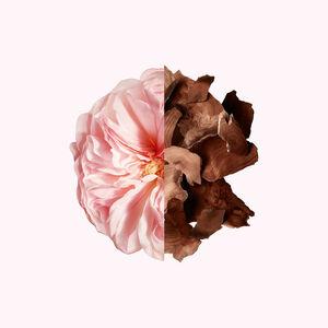 Vue 3 - IRRESISTIBLE - Eau de Parfum GIVENCHY - 20 ML - P136179