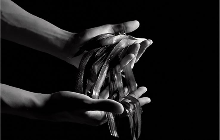 Le soin noir: un extraordinaire don de survie